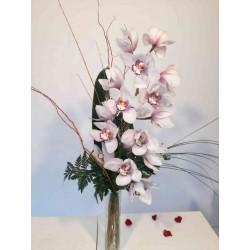 Ram orquidea Cymbidium