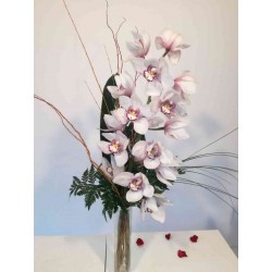 Ramo Orquidea Cymbidium