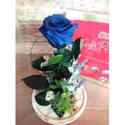 Cúpula con rosa azul y caja...
