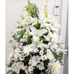 Centre funerari de liliums,...