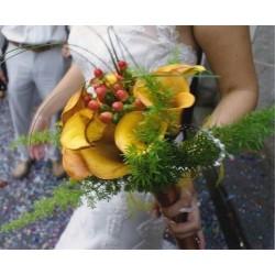 Ram de núvia Lliris taronja